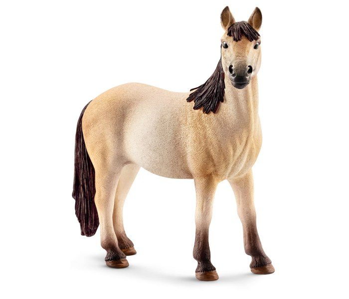 Mustang kobila