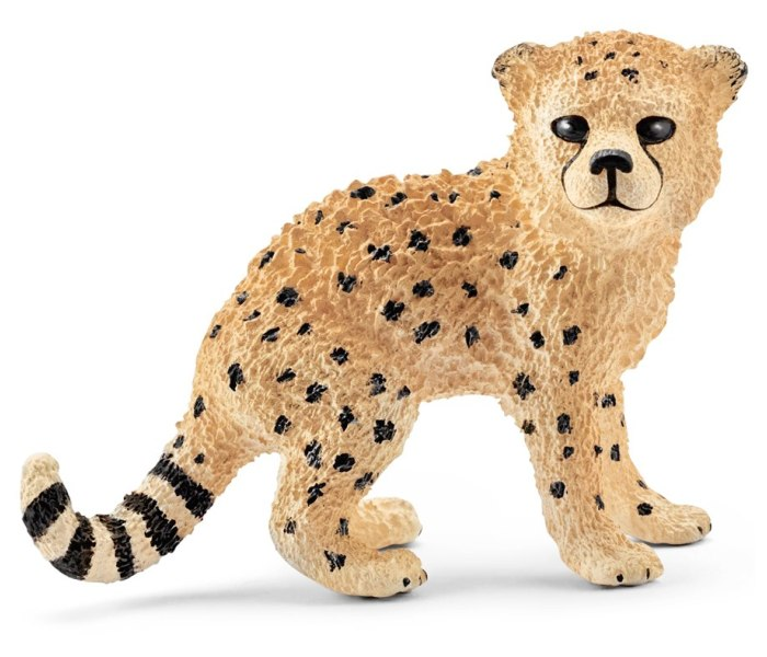 Gepard mladunce