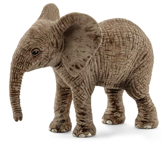 Africki slon,tele