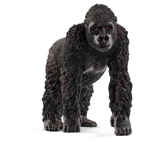 Gorila,zenka